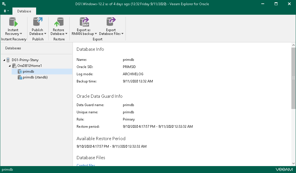 Viewing Database Information - Veeam Backup Explorers Guide