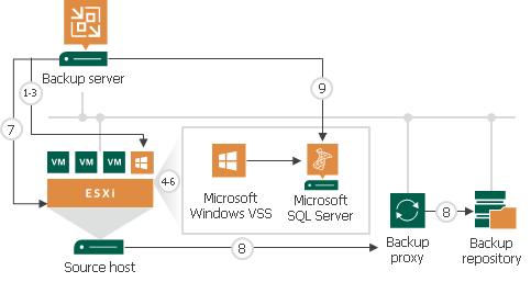 Application-Aware Processing - Veeam Backup Guide for vSphere